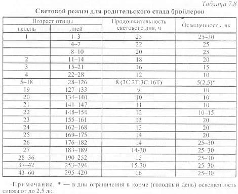 Затраты при выращивании бройлеров 348