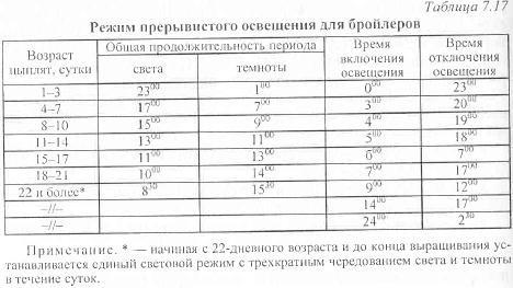 Выращивание бройлеров Температурный режим